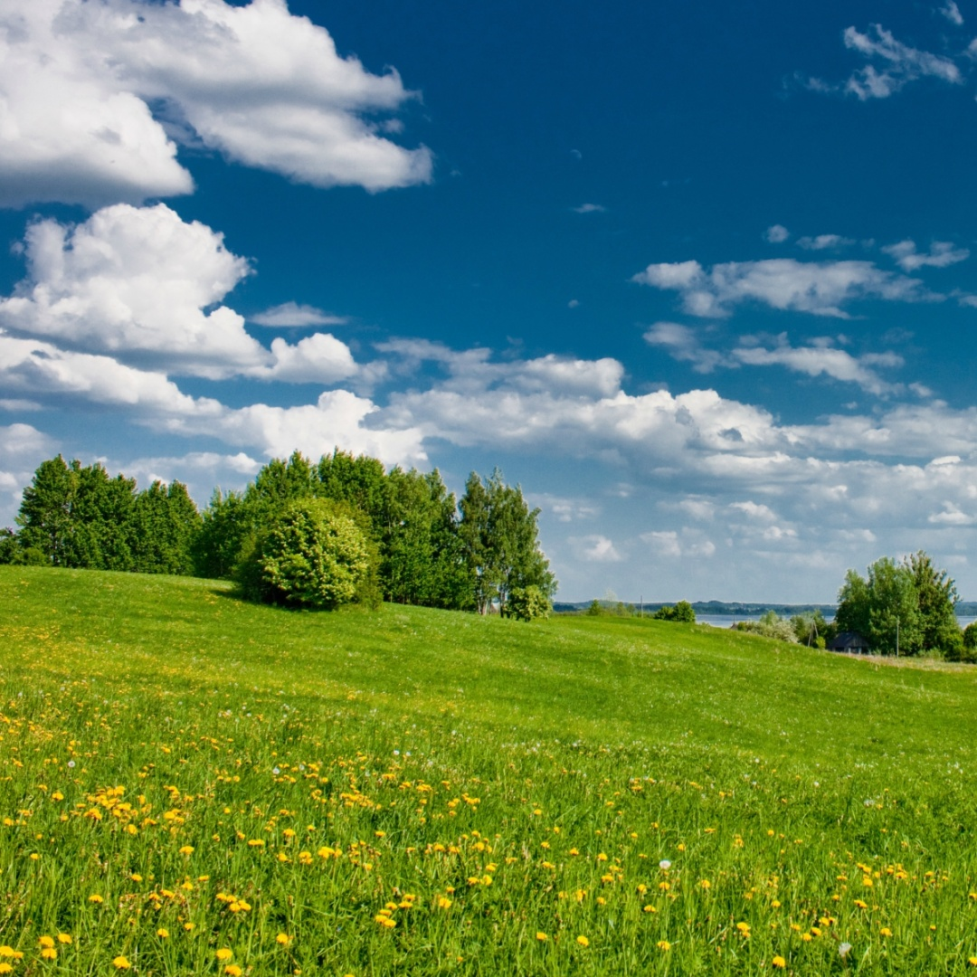 Latvia in summer Raami Travel.jpg